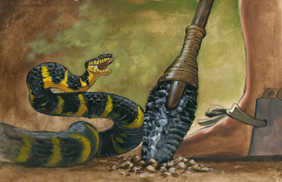 Death of the Serpents by James Fullmer