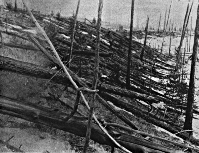 Trees felled by the Tunguska explosion. Photograph taken by the Leonid Kulik Expedition. Image from nasa.gov