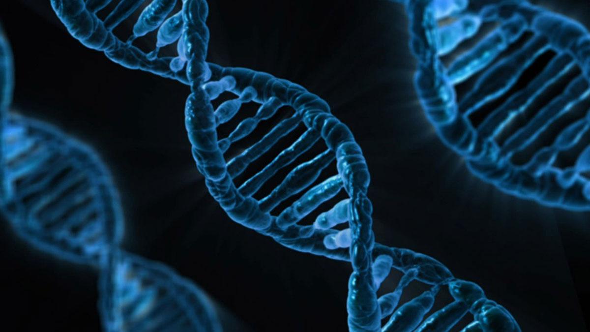DNA via pixabay.com