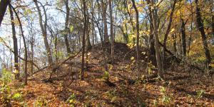 Image of Naples-Russel Mound 8 via Wikipedia